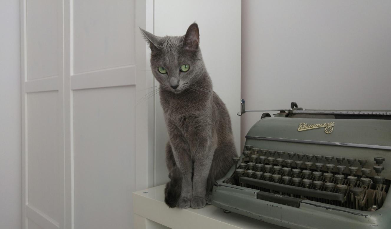 Maszyna do pisania 0