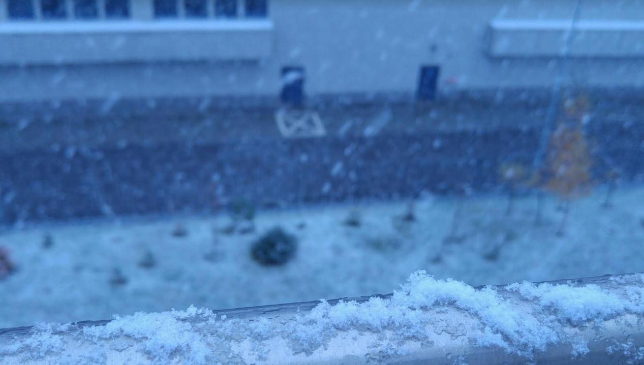 Jesienny śnieg S L O W N E S S